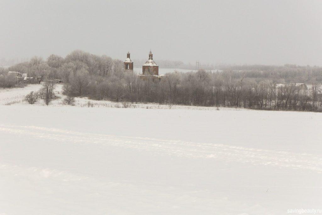 Фотография Никольской церкви в Александровке (Липецкая область)