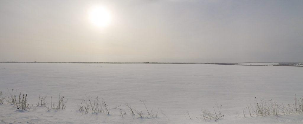 Поля, занесённые снегом под Александровкой